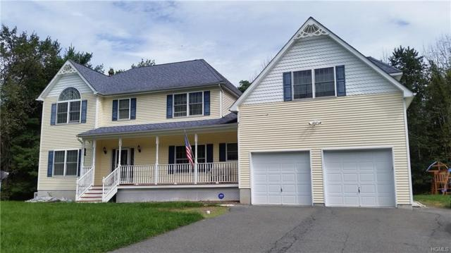 16 Philip Drive, Montgomery, NY 12549 (MLS #4844748) :: Stevens Realty Group