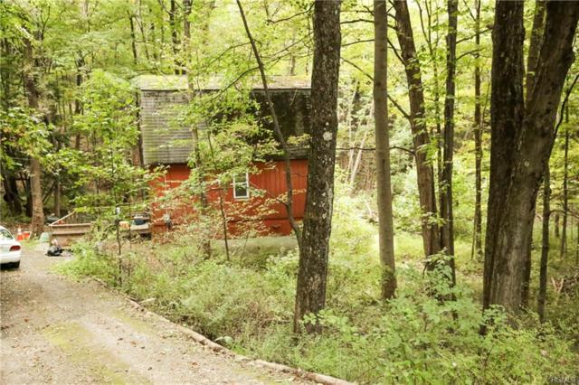94 Johnson Road, Wingdale, NY 12594 (MLS #4844761) :: William Raveis Legends Realty Group