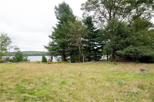 Lena Road, Forestburgh, NY 12777 (MLS #4844798) :: Mark Boyland Real Estate Team