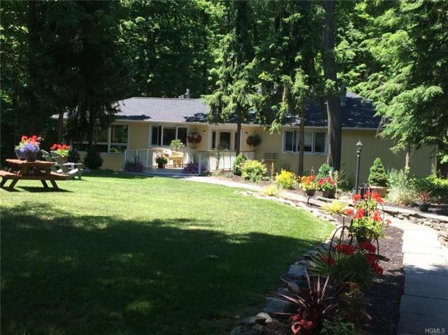 439 Lake Drive, Rhinebeck, NY 12572 (MLS #4844817) :: William Raveis Legends Realty Group