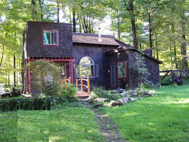 2310 Glasco Turnpike, Woodstock, NY 12498 (MLS #4844842) :: Shares of New York