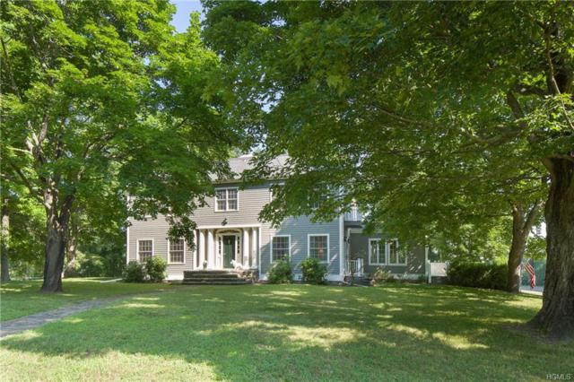 109 Melville Road, Hyde Park, NY 12538 (MLS #4844868) :: Shares of New York