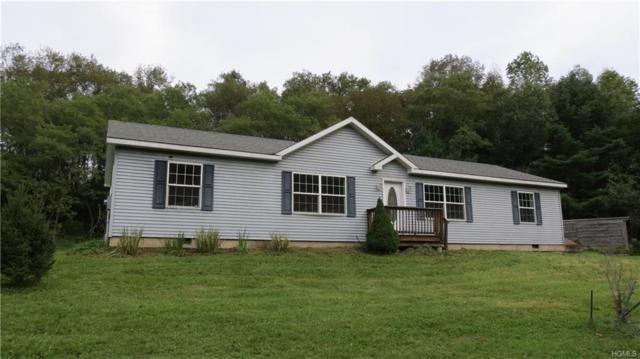 70 Forman Road, Cochecton, NY 12726 (MLS #4844873) :: Mark Boyland Real Estate Team