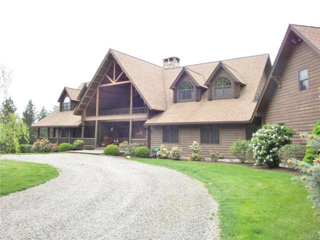 127 Brush Hill Road, Millbrook, NY 12545 (MLS #4844920) :: Mark Seiden Real Estate Team