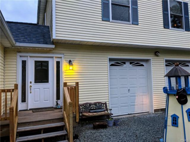 24 Old Cochecton  (Town Rd 9) Road, Narrowsburg, NY 12764 (MLS #4844969) :: Mark Boyland Real Estate Team