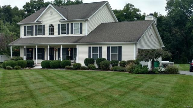 30 Ginny Lane, Fishkill, NY 12533 (MLS #4845038) :: Mark Boyland Real Estate Team