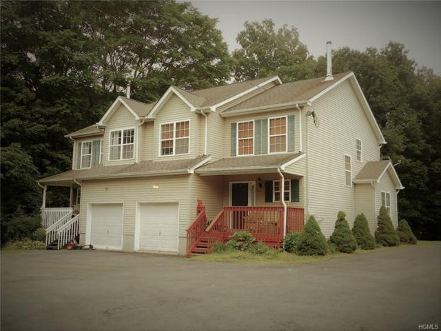 568 County Route 49, Middletown, NY 10940 (MLS #4845256) :: Shares of New York