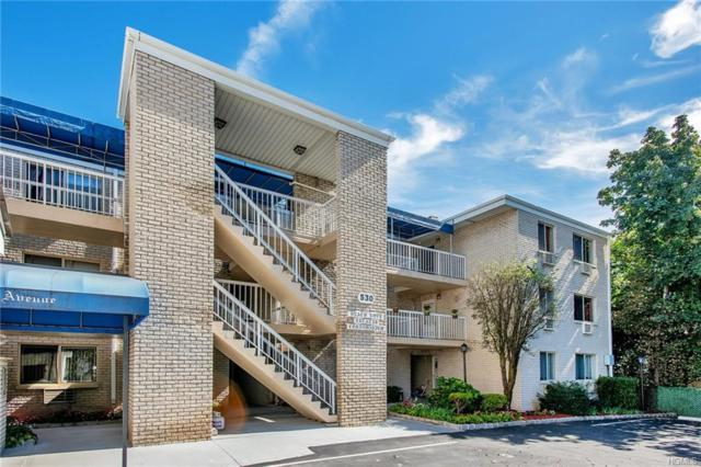 530 Ellsworth Avenue A3, Bronx, NY 10465 (MLS #4845268) :: Mark Seiden Real Estate Team