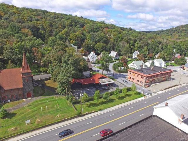209 Route 17, Tuxedo Park, NY 10987 (MLS #4845355) :: William Raveis Baer & McIntosh