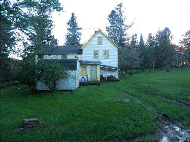 27 Lake Muskoday Road, Fremont Center, NY 12736 (MLS #4845394) :: Mark Seiden Real Estate Team