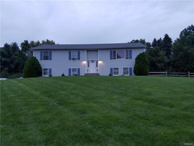 3405 Route 82, Verbank, NY 12585 (MLS #4845548) :: Mark Seiden Real Estate Team