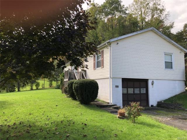 641 Lucas Avenue Extn, Hurley, NY 12443 (MLS #4845760) :: Mark Seiden Real Estate Team