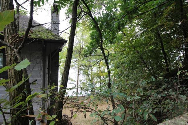 98 Floyd Ackert Road, Esopus, NY 12429 (MLS #4845914) :: Mark Seiden Real Estate Team