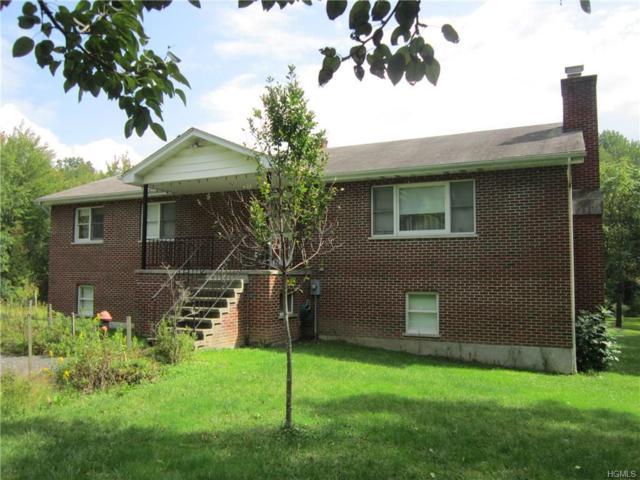 3063 New Prospect Road, Pine Bush, NY 12566 (MLS #4846088) :: The McGovern Caplicki Team