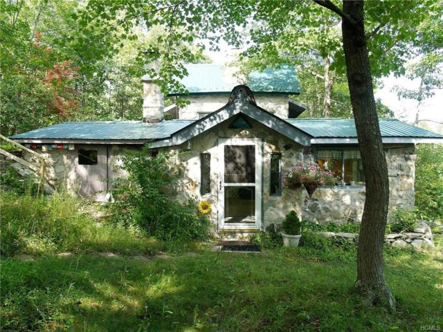 63 Hortontown Hill Road, Hopewell Junction, NY 12533 (MLS #4846269) :: William Raveis Legends Realty Group
