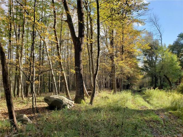 Youngs Hill Road, Liberty, NY 12754 (MLS #4846273) :: Mark Boyland Real Estate Team