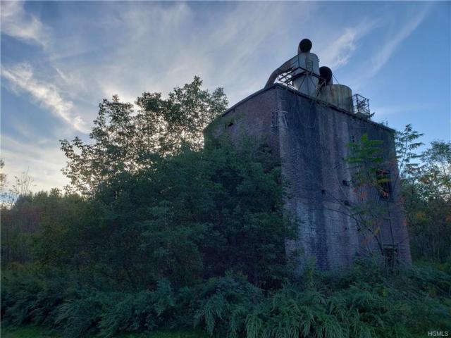 13 River Street, Livingston Manor, NY 12758 (MLS #4846277) :: William Raveis Legends Realty Group