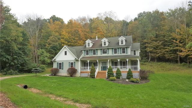 632 County Route 12, New Hampton, NY 10958 (MLS #4846306) :: William Raveis Legends Realty Group