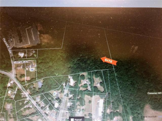 822 Gardnertown Farms Road, Newburgh, NY 12550 (MLS #4846341) :: William Raveis Baer & McIntosh