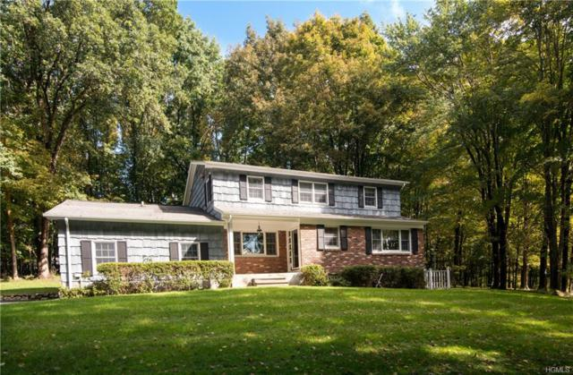 20 Wilner Road, Somers, NY 10589 (MLS #4846546) :: William Raveis Legends Realty Group