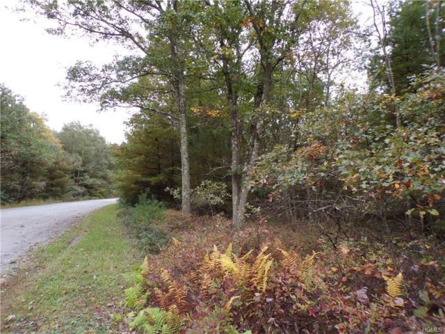 Split Rock Drive, Highland, NY 12528 (MLS #4846547) :: Mark Seiden Real Estate Team