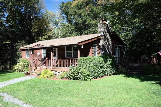 20 Hillriegel Road, Callicoon, NY 12723 (MLS #4846551) :: Shares of New York