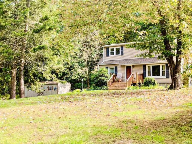 101 Lily Lake Road, Highland, NY 12528 (MLS #4846576) :: Mark Seiden Real Estate Team