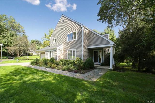 9 Elizabeth Court, Briarcliff Manor, NY 10510 (MLS #4846585) :: William Raveis Baer & McIntosh
