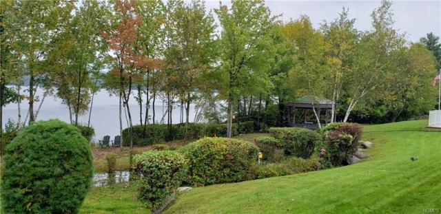 29 Kenny Lane, Kiamesha Lake, NY 12751 (MLS #4846605) :: Mark Boyland Real Estate Team