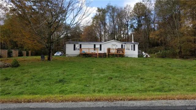 547 Stump Pond Road, Livingston Manor, NY 12758 (MLS #4846932) :: William Raveis Legends Realty Group