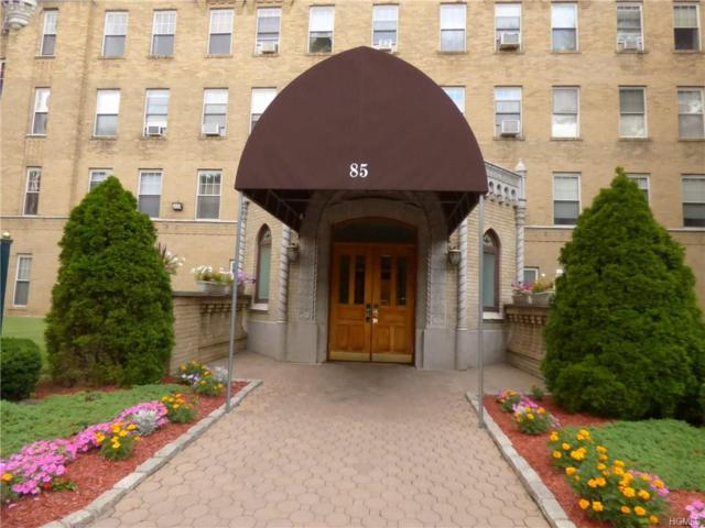 85 Bronx River Road 2S, Yonkers, NY 10704 (MLS #4846974) :: William Raveis Baer & McIntosh