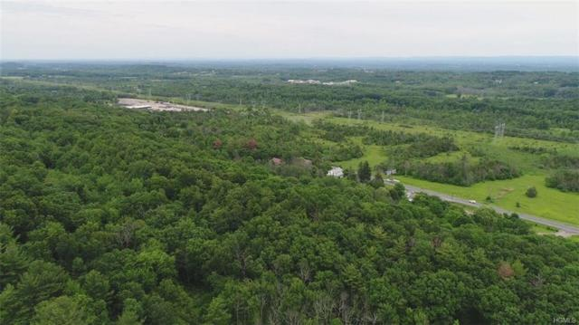 000 Route 9W, Athens, NY 12015 (MLS #4846992) :: Shares of New York