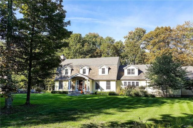 29 Harrington Drive, Austerlitz, NY 12017 (MLS #4847077) :: Shares of New York