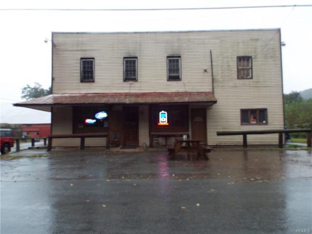 48 Cochecton Road, Cochecton, NY 12726 (MLS #4847148) :: Stevens Realty Group