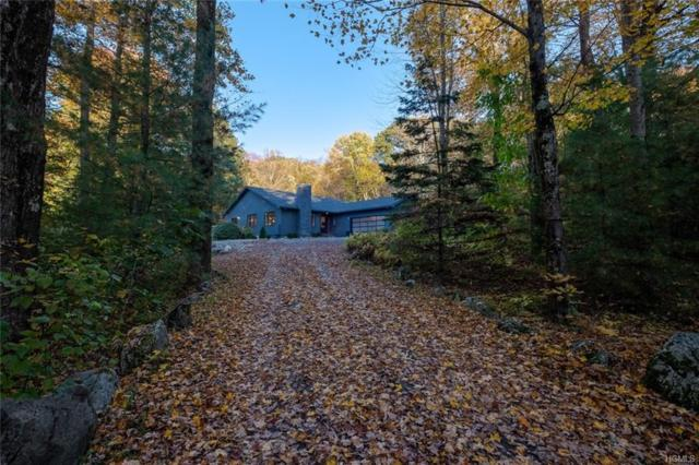 240 Stonewall Road, Austerlitz, NY 12037 (MLS #4847214) :: Shares of New York