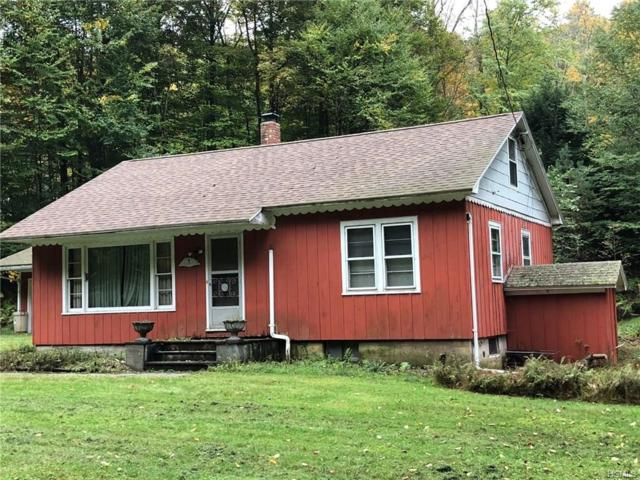 178 County Road 94, Hankins, NY 12741 (MLS #4847291) :: Shares of New York