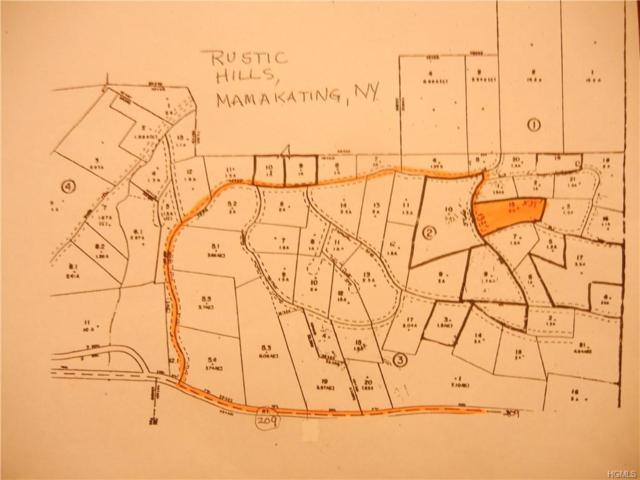 Rambling Road, Wurtsboro, NY 12790 (MLS #4847318) :: Shares of New York
