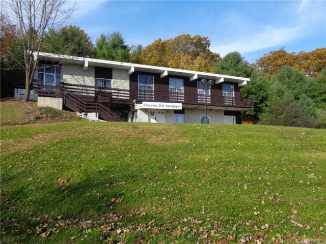271 Lake Louise Marie Road, Rock Hill, NY 12775 (MLS #4847436) :: William Raveis Legends Realty Group