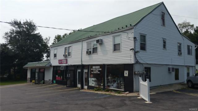 2458-2474 Route 302, Middletown, NY 12589 (MLS #4847499) :: The McGovern Caplicki Team