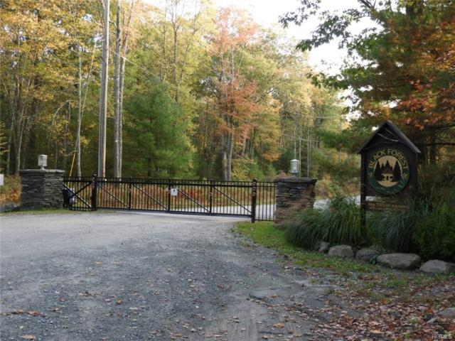 Upper Lumber Road, Glen Spey, NY 12737 (MLS #4847533) :: William Raveis Legends Realty Group