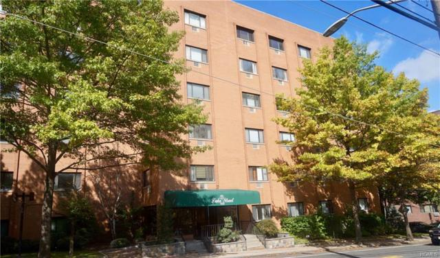 21 Lake Street 3G, White Plains, NY 10603 (MLS #4847593) :: William Raveis Legends Realty Group