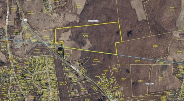 Route 55 Rear, Lagrangeville, NY 12540 (MLS #4847847) :: Mark Seiden Real Estate Team