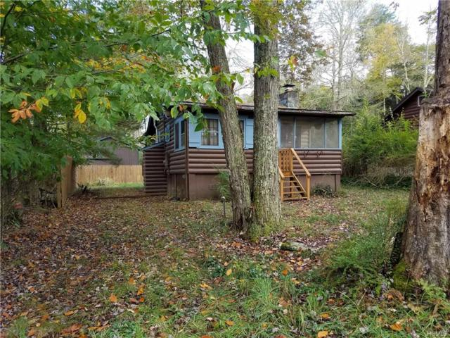 33 Circle Place, Smallwood, NY 12778 (MLS #4847926) :: William Raveis Legends Realty Group