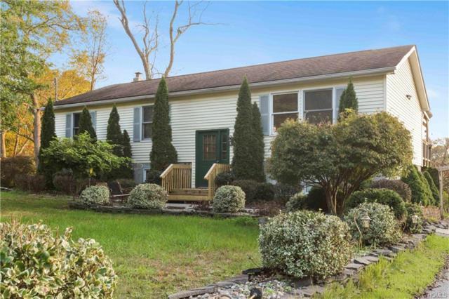 11 Edgewater Lane, Port Jervis, NY 12771 (MLS #4847955) :: Mark Seiden Real Estate Team