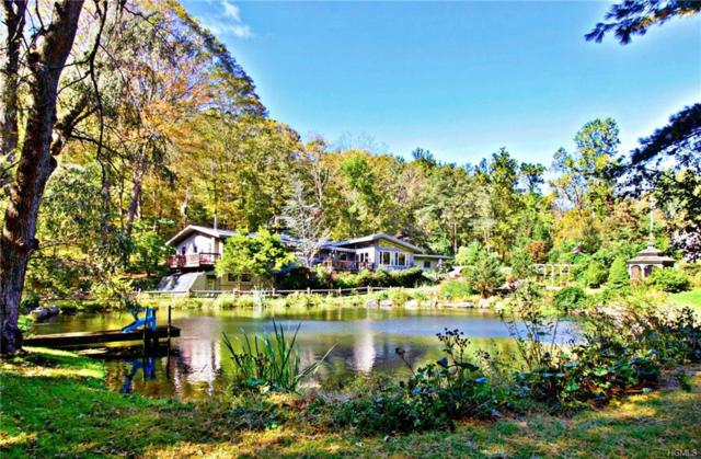 1 Sunrise Drive, Putnam Valley, NY 10579 (MLS #4847999) :: William Raveis Baer & McIntosh