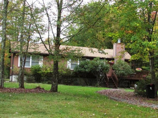 191 Post Road, Swan Lake, NY 12783 (MLS #4848117) :: Mark Boyland Real Estate Team
