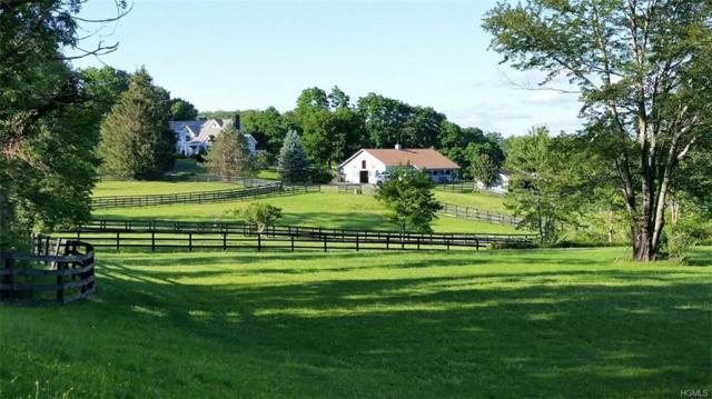 738 N Quaker Hill Road, Pawling, NY 12564 (MLS #4848241) :: Mark Seiden Real Estate Team