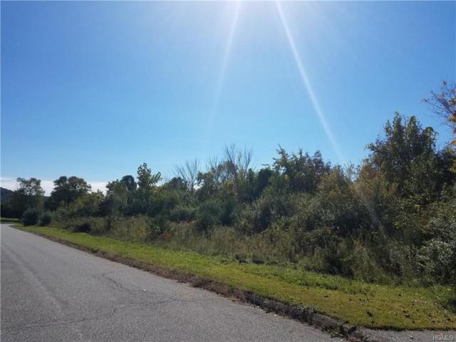 Hillside, Dover Plains, NY 12594 (MLS #4848308) :: William Raveis Legends Realty Group