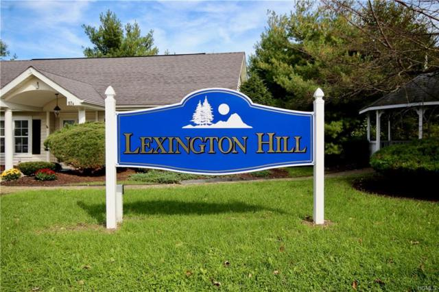 15 Lexington Hill #11, Harriman, NY 10926 (MLS #4848352) :: William Raveis Baer & McIntosh