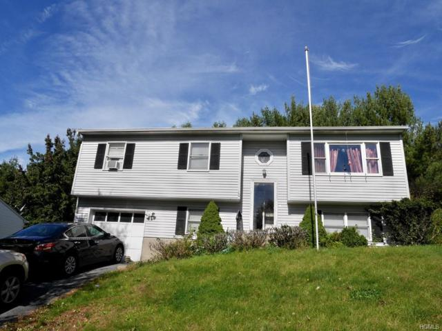 10 King Street, Monroe, NY 10950 (MLS #4848415) :: Shares of New York